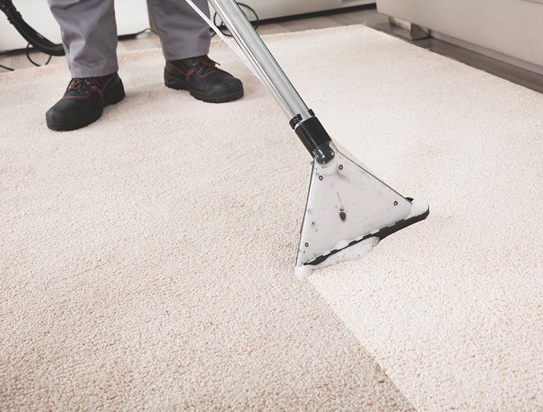 Carpet and upholstery cleaning Northampton