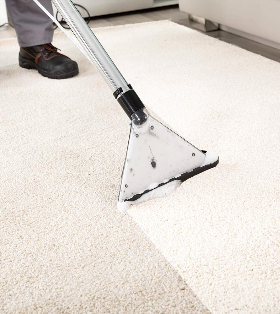 Carpet and upholstery cleaning services in Northampton